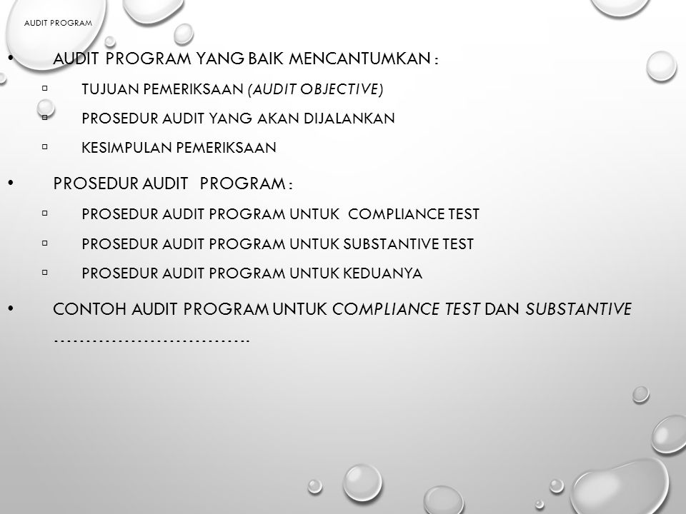 Audit program yang baik mencantumkan :