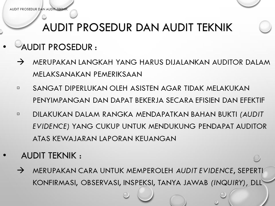 AUDIT PROSEDUR dan AUDIT TEKNIK