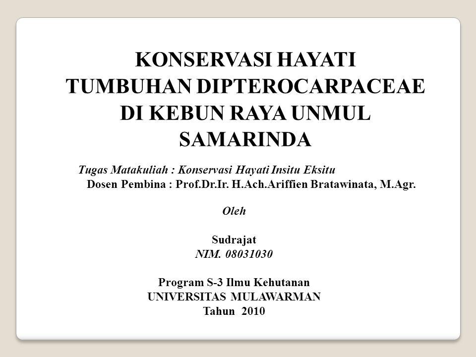 TUMBUHAN DIPTEROCARPACEAE UNIVERSITAS MULAWARMAN
