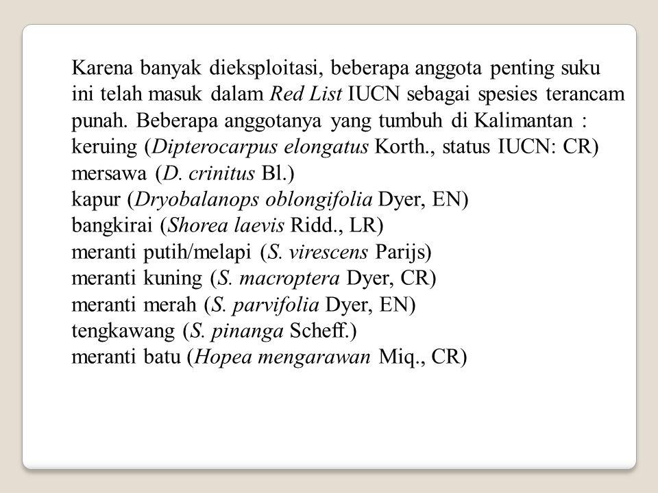 Karena banyak dieksploitasi, beberapa anggota penting suku ini telah masuk dalam Red List IUCN sebagai spesies terancam punah. Beberapa anggotanya yang tumbuh di Kalimantan :
