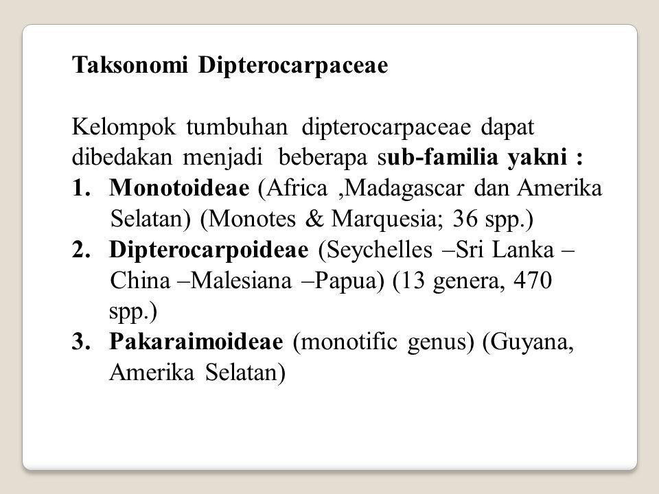 Taksonomi Dipterocarpaceae