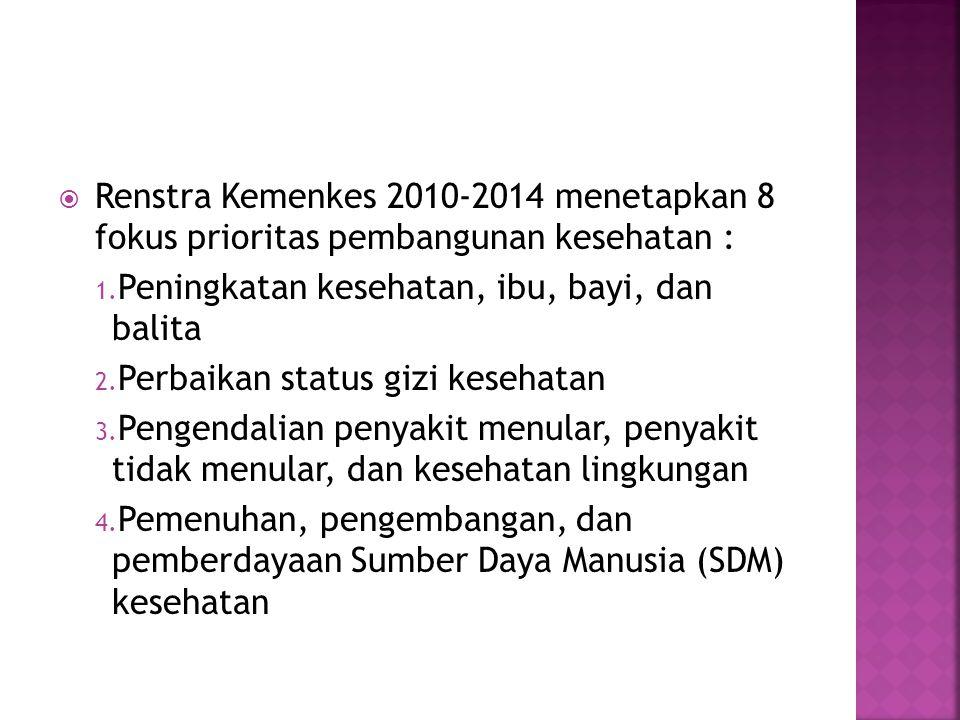 Renstra Kemenkes 2010-2014 menetapkan 8 fokus prioritas pembangunan kesehatan :