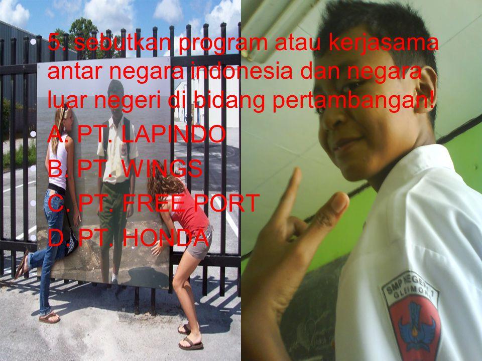 5. sebutkan program atau kerjasama antar negara indonesia dan negara luar negeri di bidang pertambangan!