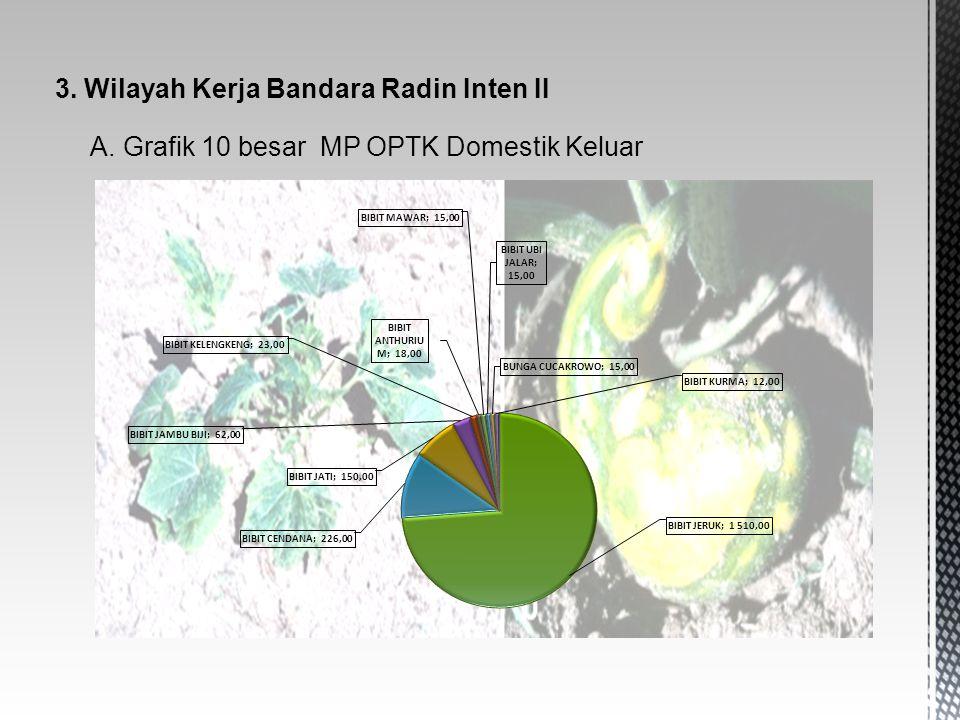 3. Wilayah Kerja Bandara Radin Inten II