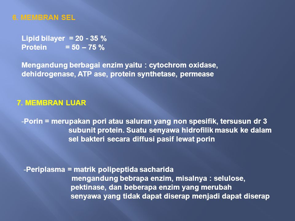 6. MEMBRAN SEL Lipid bilayer = 20 - 35 % Protein = 50 – 75 %