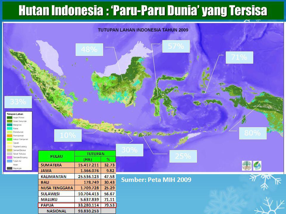 Hutan Indonesia : 'Paru-Paru Dunia' yang Tersisa