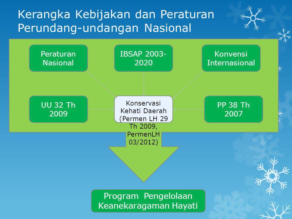 Kerangka Kebijakan dan Peraturan Perundang-undangan Nasional