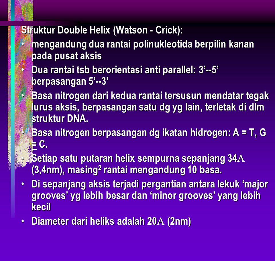 Struktur Double Helix (Watson - Crick):