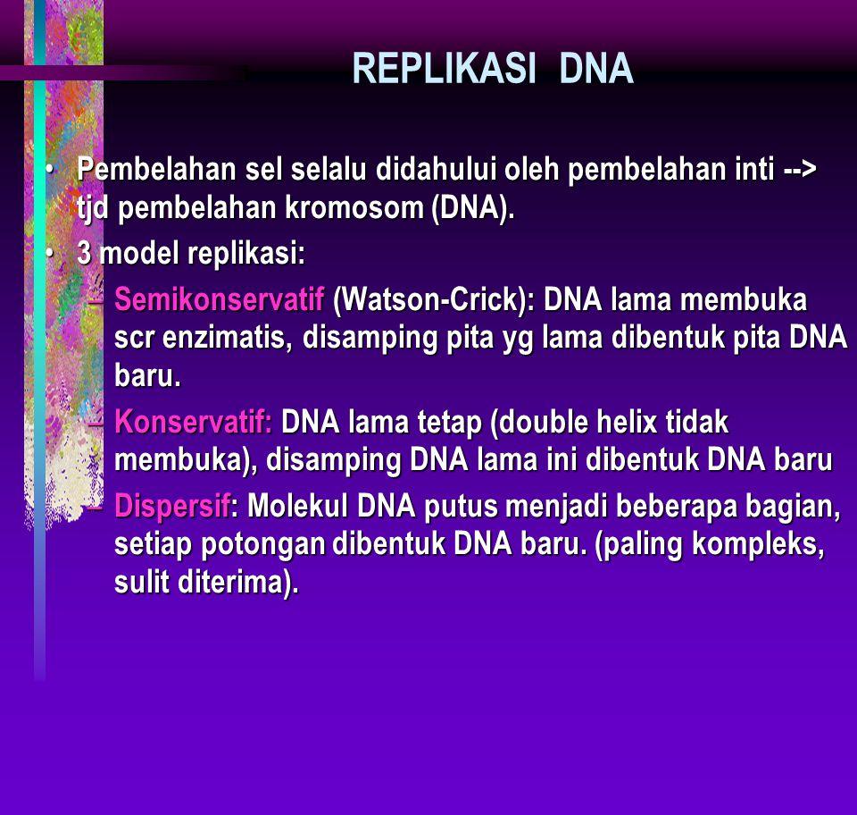 REPLIKASI DNA Pembelahan sel selalu didahului oleh pembelahan inti --> tjd pembelahan kromosom (DNA).