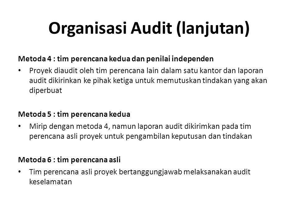 Organisasi Audit (lanjutan)