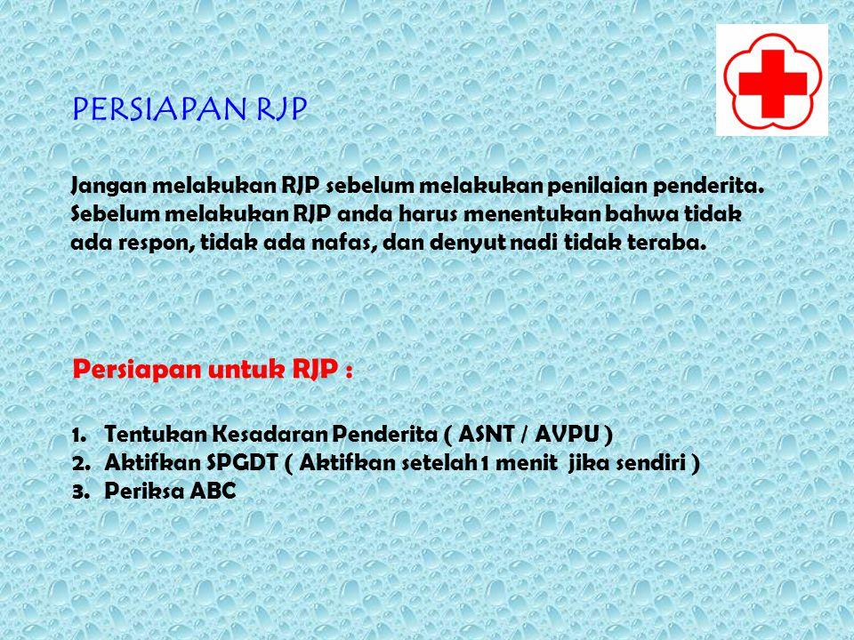 PERSIAPAN RJP Persiapan untuk RJP :