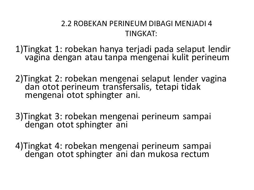 2.2 ROBEKAN PERINEUM DIBAGI MENJADI 4 TINGKAT: