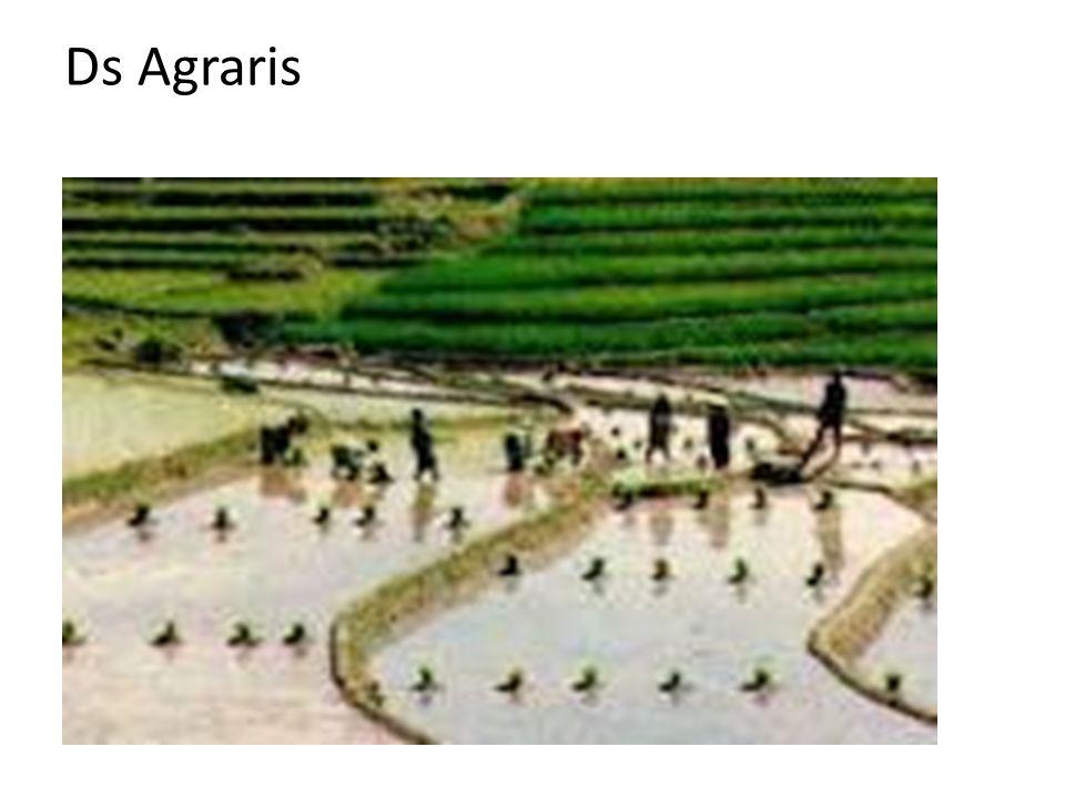 Ds Agraris