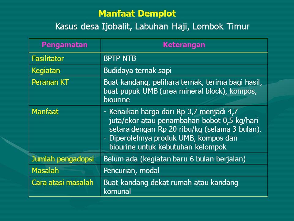 Kasus desa Ijobalit, Labuhan Haji, Lombok Timur
