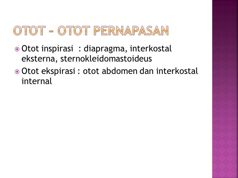 OTOT – OTOT PERNAPASAN Otot inspirasi : diapragma, interkostal eksterna, sternokleidomastoideus.