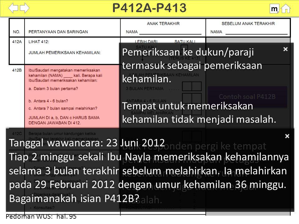 P412A-P413 Tanggal wawancara: 23 Juni 2012