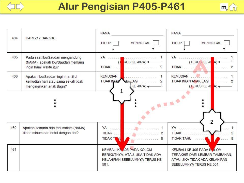 Alur Pengisian P405-P461 m SDKI 2012 100% 1 ... ... ... 2