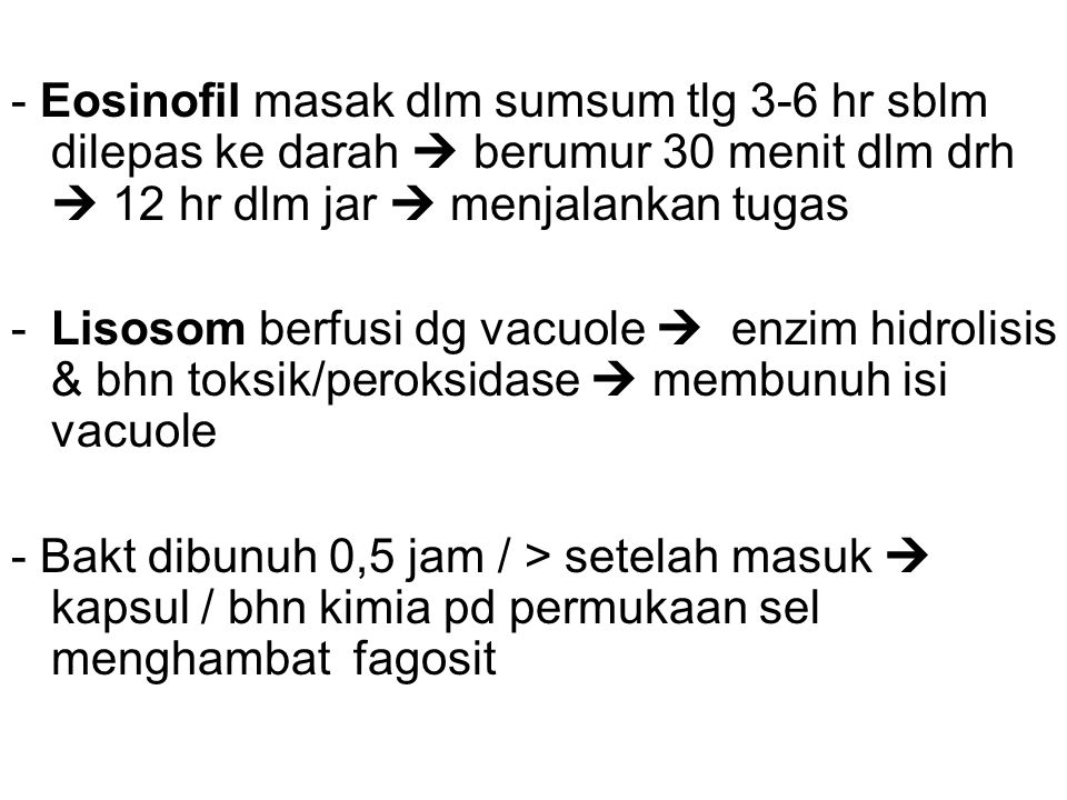 - Eosinofil masak dlm sumsum tlg 3-6 hr sblm dilepas ke darah  berumur 30 menit dlm drh  12 hr dlm jar  menjalankan tugas