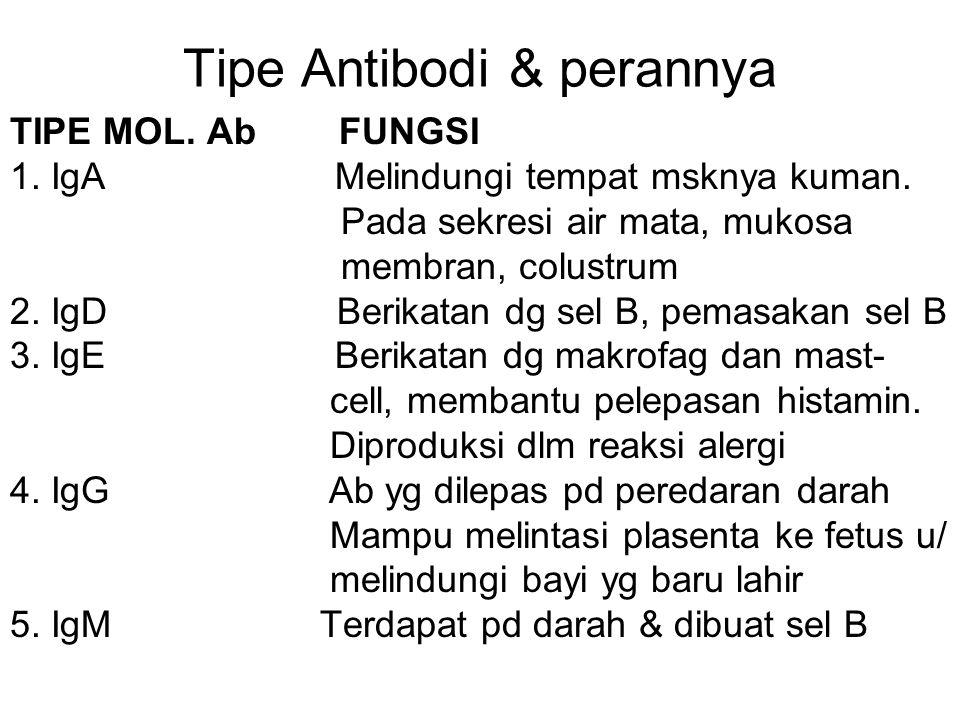 Tipe Antibodi & perannya