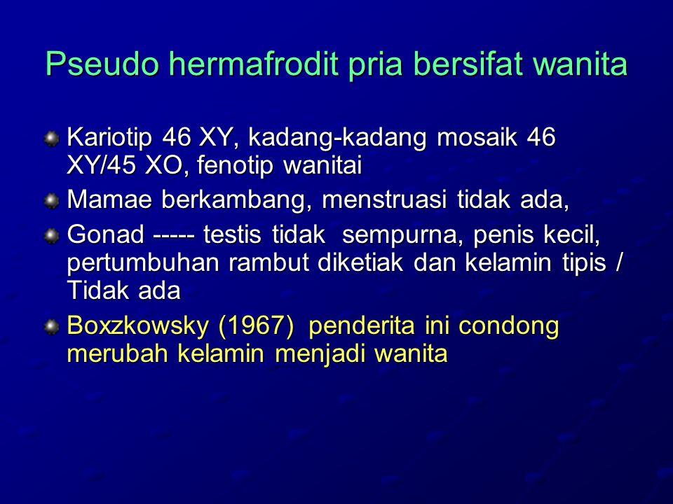Pseudo hermafrodit pria bersifat wanita