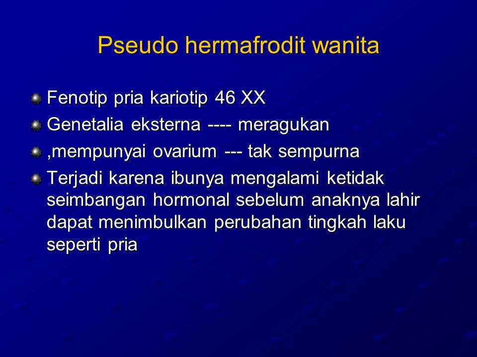 Pseudo hermafrodit wanita