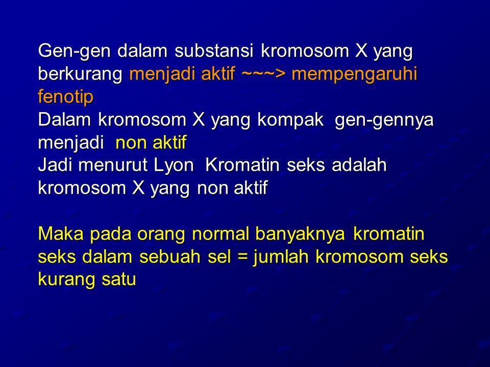 Gen-gen dalam substansi kromosom X yang berkurang menjadi aktif ~~~> mempengaruhi fenotip Dalam kromosom X yang kompak gen-gennya menjadi non aktif Jadi menurut Lyon Kromatin seks adalah kromosom X yang non aktif Maka pada orang normal banyaknya kromatin seks dalam sebuah sel = jumlah kromosom seks kurang satu