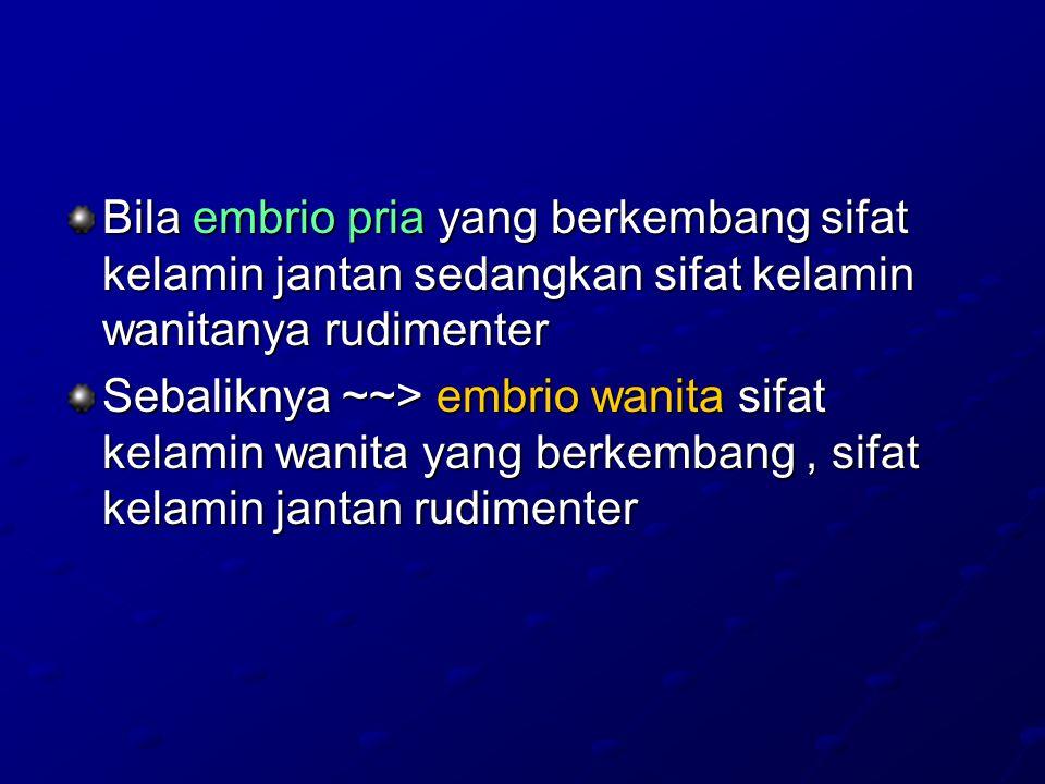 Bila embrio pria yang berkembang sifat kelamin jantan sedangkan sifat kelamin wanitanya rudimenter