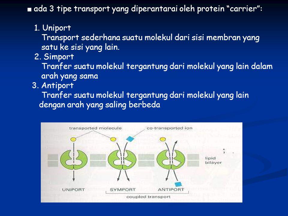 ■ ada 3 tipe transport yang diperantarai oleh protein carrier :