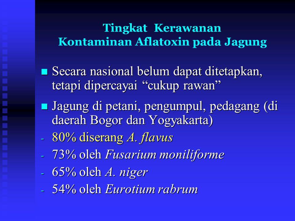 Tingkat Kerawanan Kontaminan Aflatoxin pada Jagung