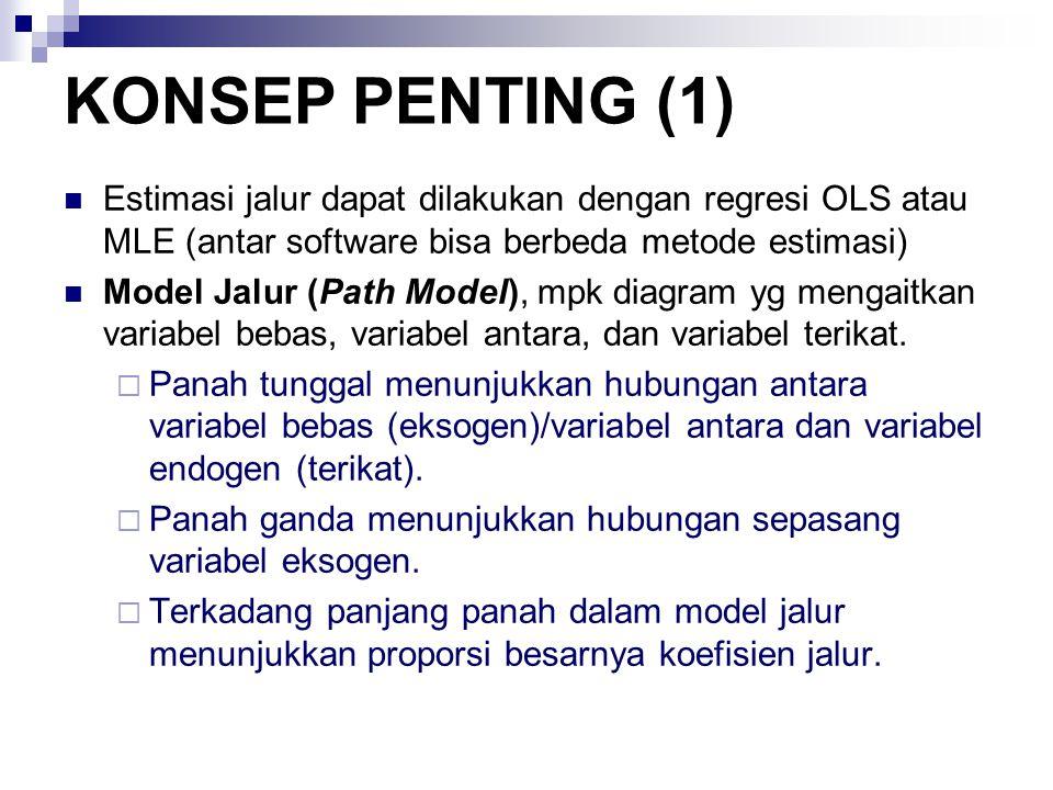 KONSEP PENTING (1) Estimasi jalur dapat dilakukan dengan regresi OLS atau MLE (antar software bisa berbeda metode estimasi)