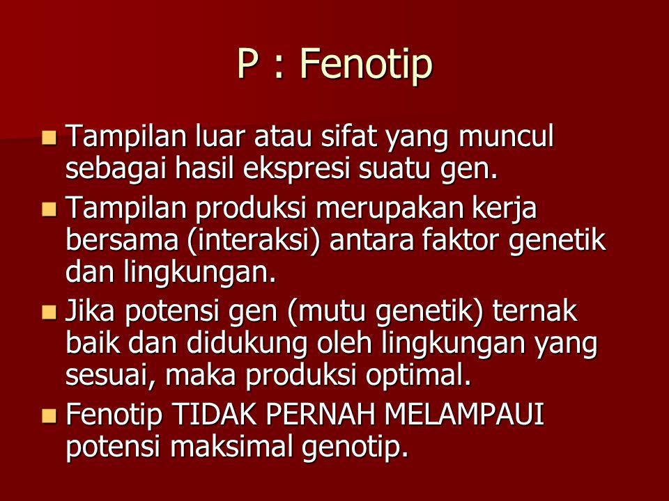 P : Fenotip Tampilan luar atau sifat yang muncul sebagai hasil ekspresi suatu gen.