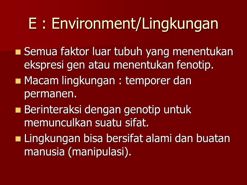 E : Environment/Lingkungan