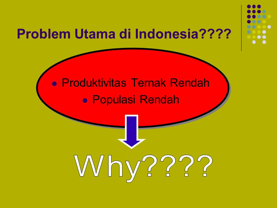 Problem Utama di Indonesia
