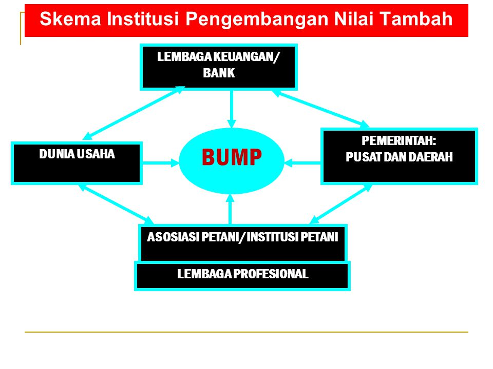 Skema Institusi Pengembangan Nilai Tambah