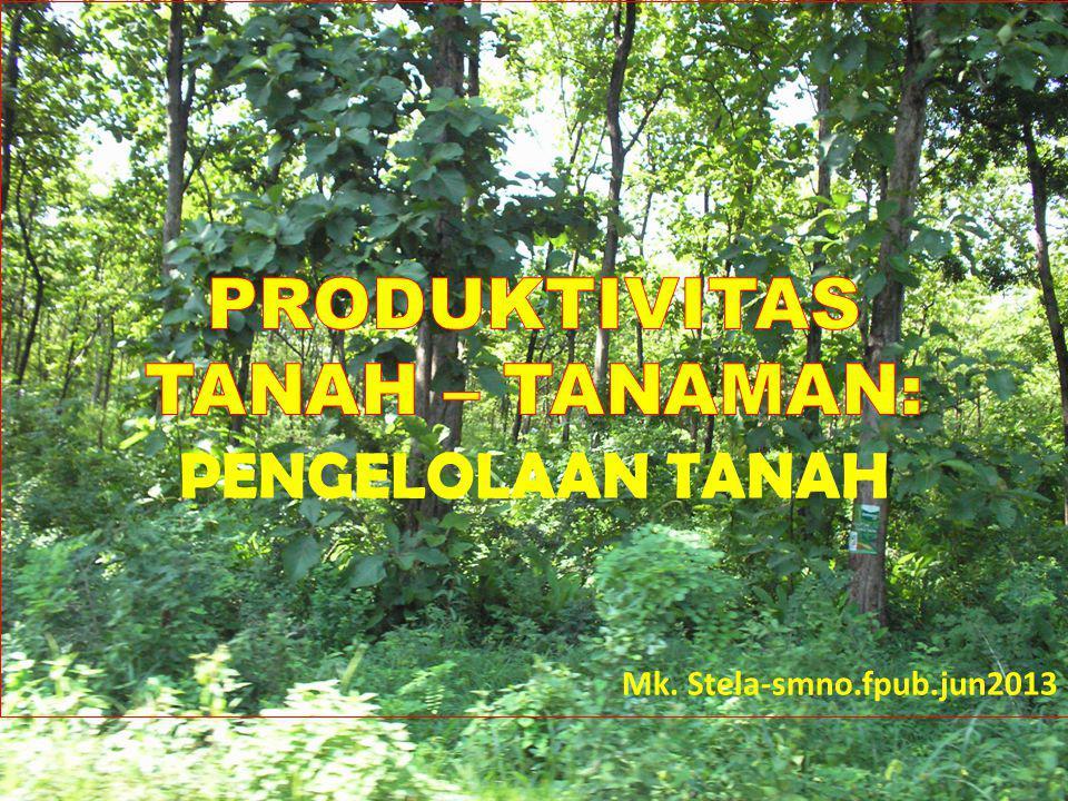 PRODUKTIVITAS TANAH – TANAMAN: