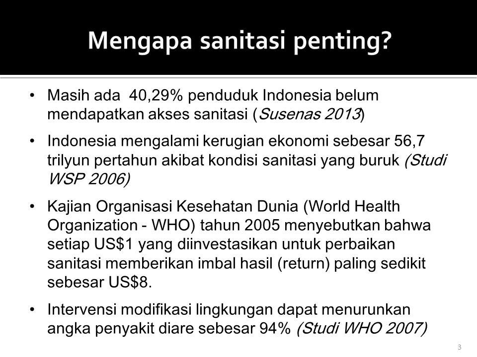 Mengapa sanitasi penting