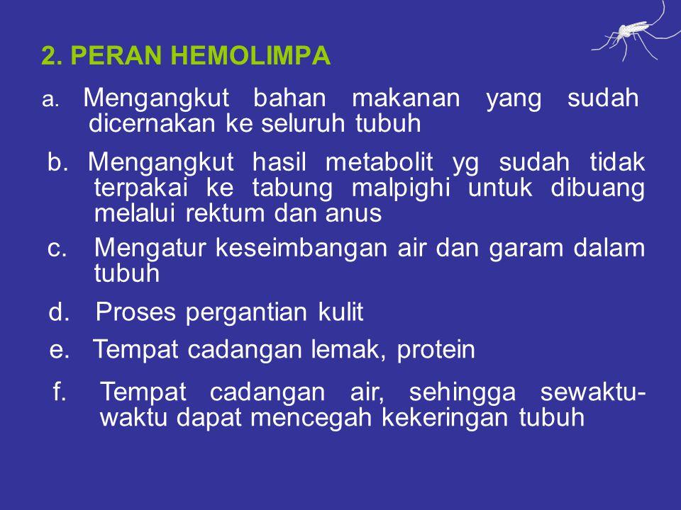 c. Mengatur keseimbangan air dan garam dalam tubuh