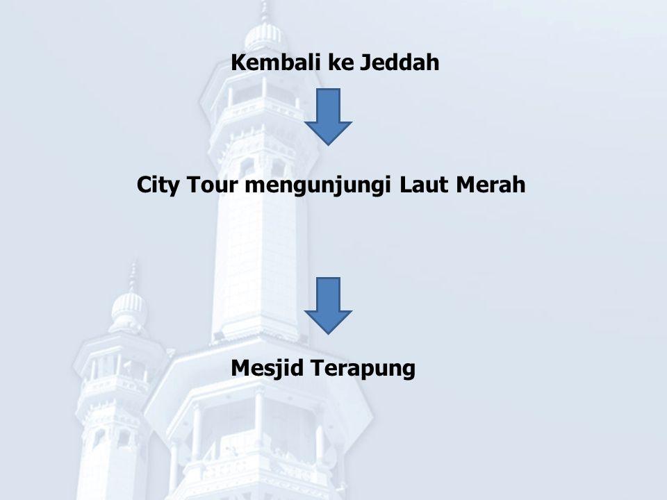 City Tour mengunjungi Laut Merah