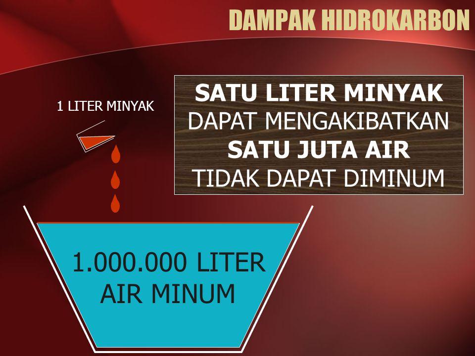 DAMPAK HIDROKARBON 1.000.000 LITER AIR MINUM SATU LITER MINYAK