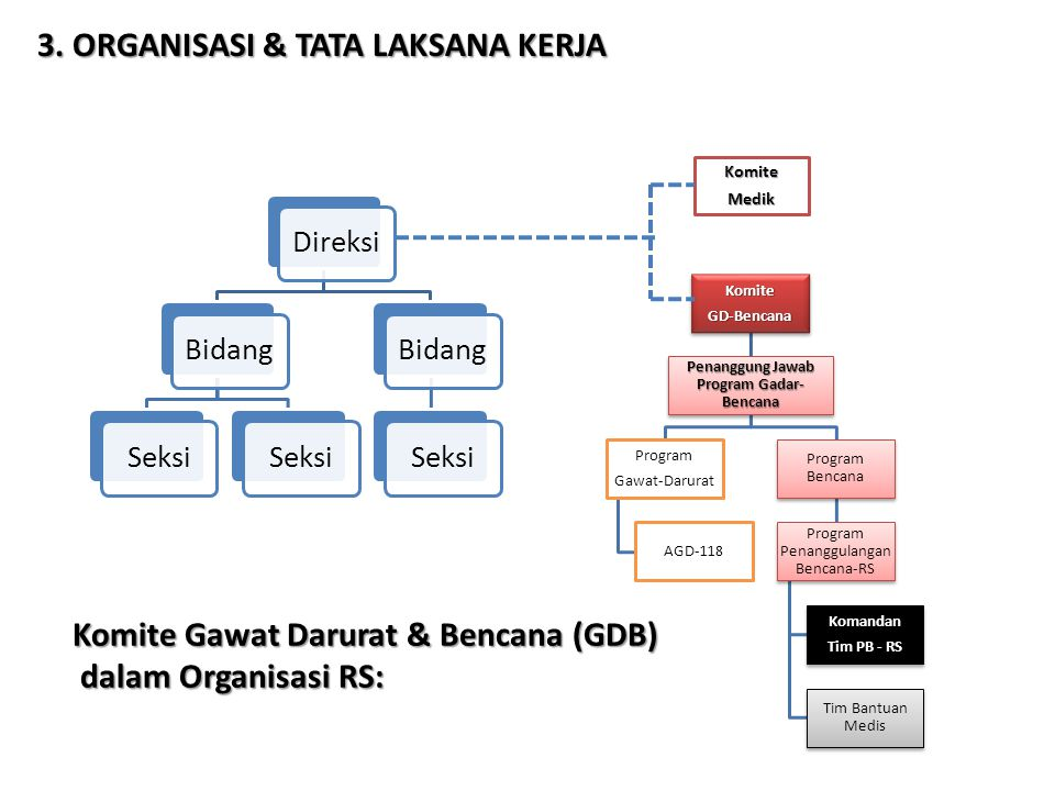 Komite Gawat Darurat & Bencana (GDB) dalam Organisasi RS: