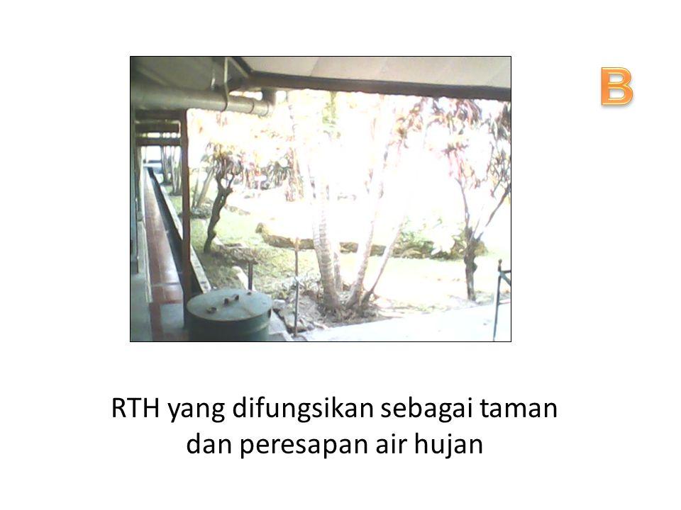RTH yang difungsikan sebagai taman dan peresapan air hujan