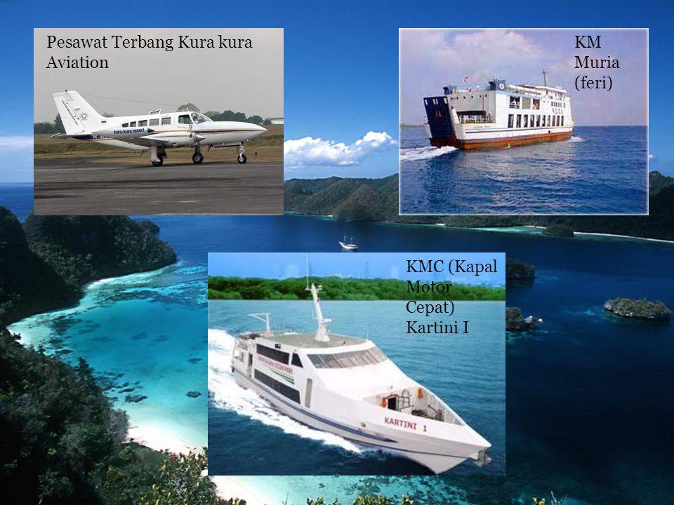 Pesawat Terbang Kura kura Aviation