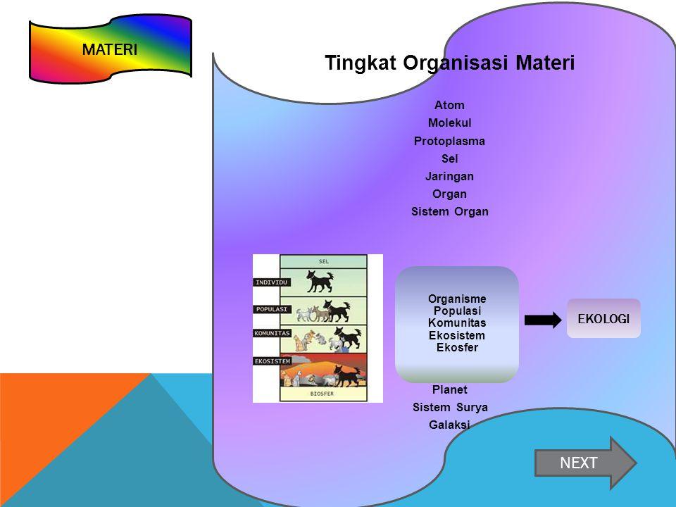 Tingkat Organisasi Materi