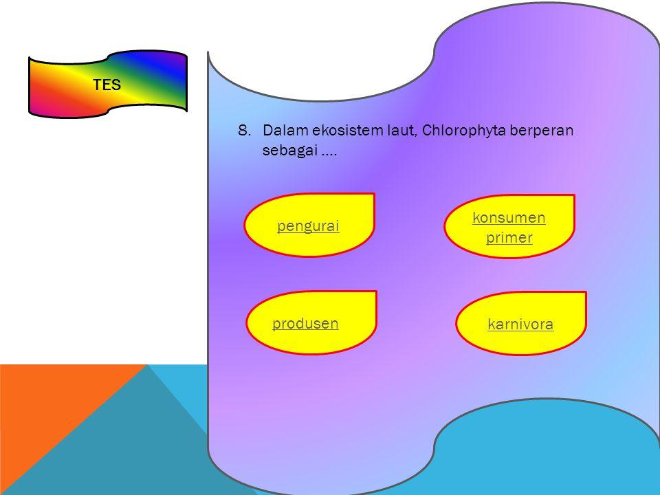 TES Dalam ekosistem laut, Chlorophyta berperan sebagai ….