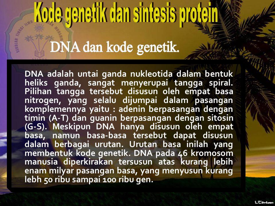 Kode genetik dan sintesis protein
