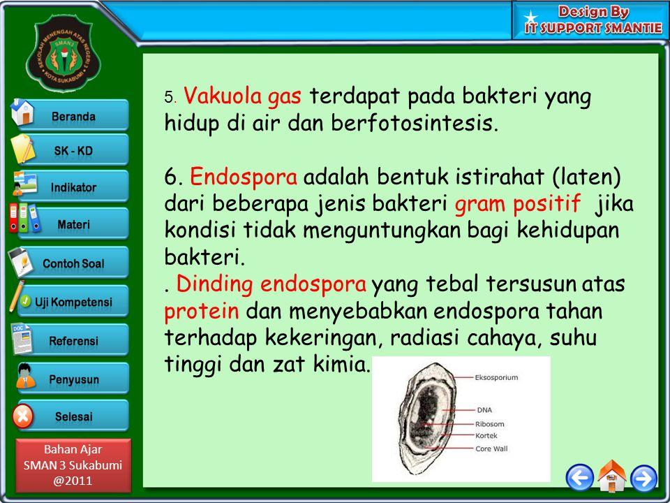 5. Vakuola gas terdapat pada bakteri yang hidup di air dan berfotosintesis.