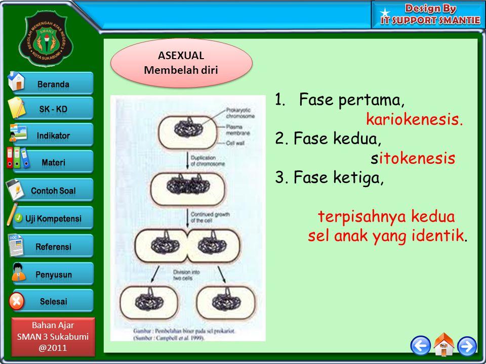 Fase pertama, kariokenesis. 2. Fase kedua, sitokenesis 3. Fase ketiga,
