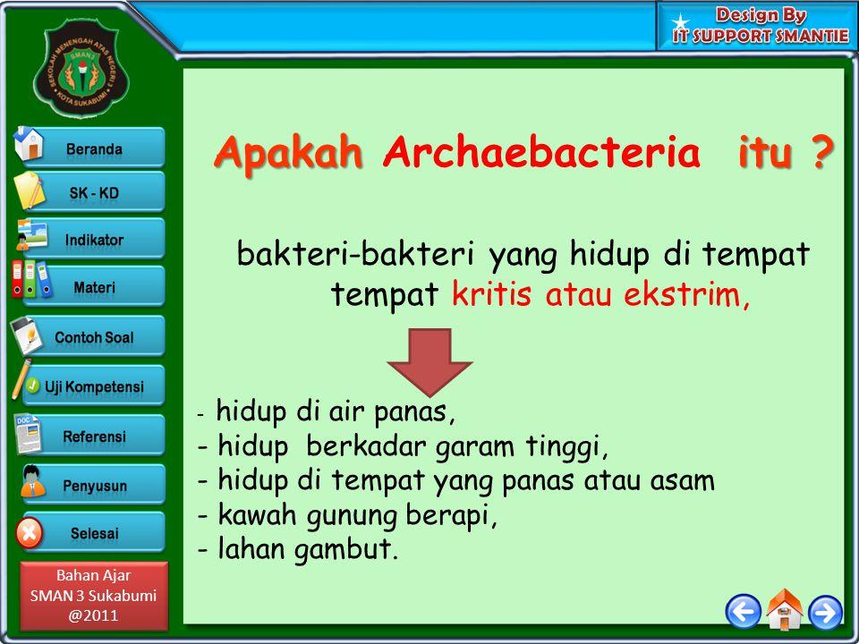 Apakah Archaebacteria itu