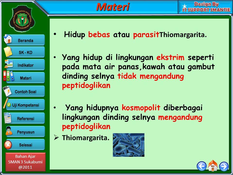 Materi Hidup bebas atau parasitThiomargarita.