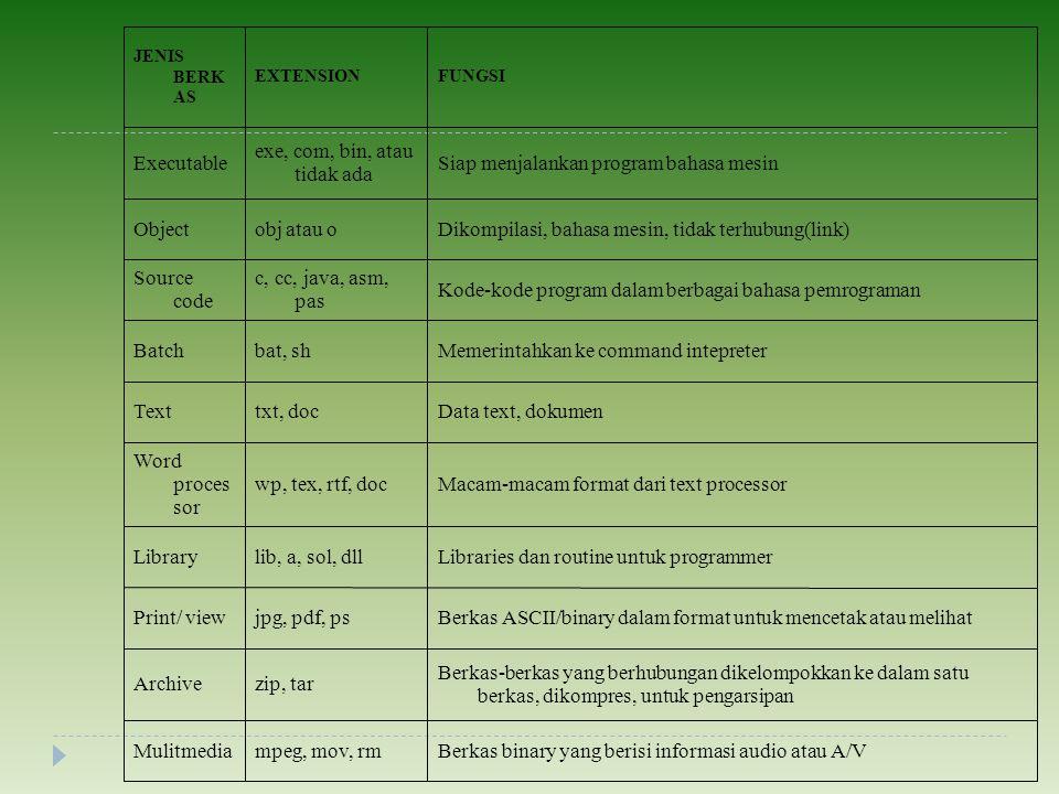 Berkas binary yang berisi informasi audio atau A/V mpeg, mov, rm